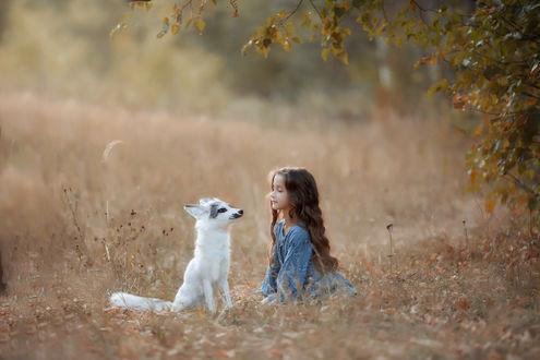 Фото Девочка сидит рядом с собачкой. Фотограф Соболева Юлия