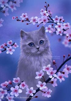Фото Серый котенок сидит среди веток цветущей сакуры, by ARiA-Illustration