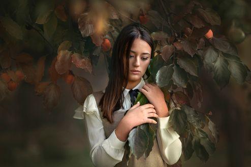 Фото Девушка стоит у веток с зелеными листьями