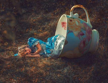 Фото Девушка лежит на траве, а ножки лежат в чашке, by volodymyr_stus