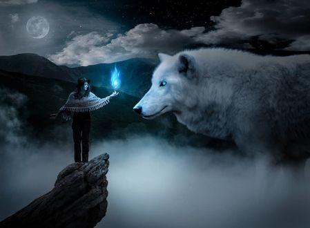 Фото Девушка с магией над рукой стоит перед волком, by volodymyr_stus