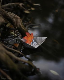 Фото Осенний листочек на бумажном кораблике, by tatakytina