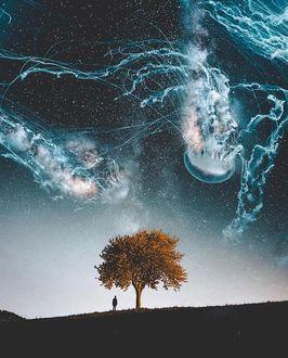 Фото Мужчина стоит возле пожелтевшего дерева на фоне ночного неба, в котором медузы