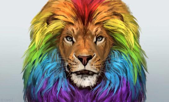 Фото Разноцветный рисованный лев, by LhuneArt