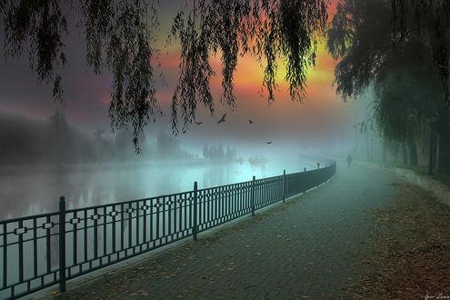 Фото Туманная набережная. Фотограф Игорь Зенин
