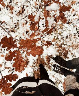 Фото Парень с девушкой стоят на снегу с осенними листьями