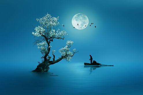 Фото Человек в лодке на воде перед деревом на фоне луны, by iDs