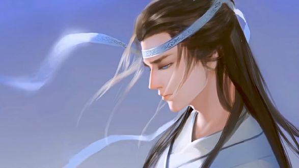 Фото Грустный Лань Ван Цзи из китайского аниме Mo Dao Zu Shi / Магистр дьявольского культа