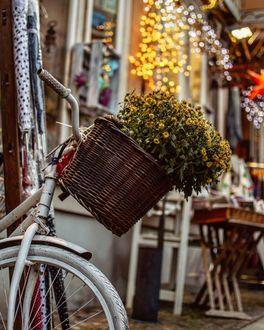 Фото Цветы в корзине на велосипеде, стоящем на улице города