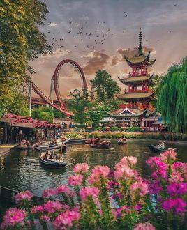 Фото Парк в Японии