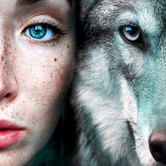 Фото Голубоглазая девушка и волк. Фотограф Claire Luxton