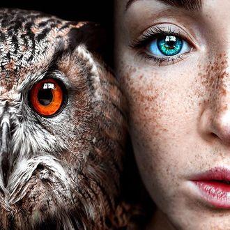 Фото Голубоглазая девушка с веснушками и сова. Фотограф Claire Luxton