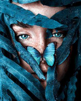Фото Голубоглазая девушка с бабочкой на носу, by claireluxtonstudio