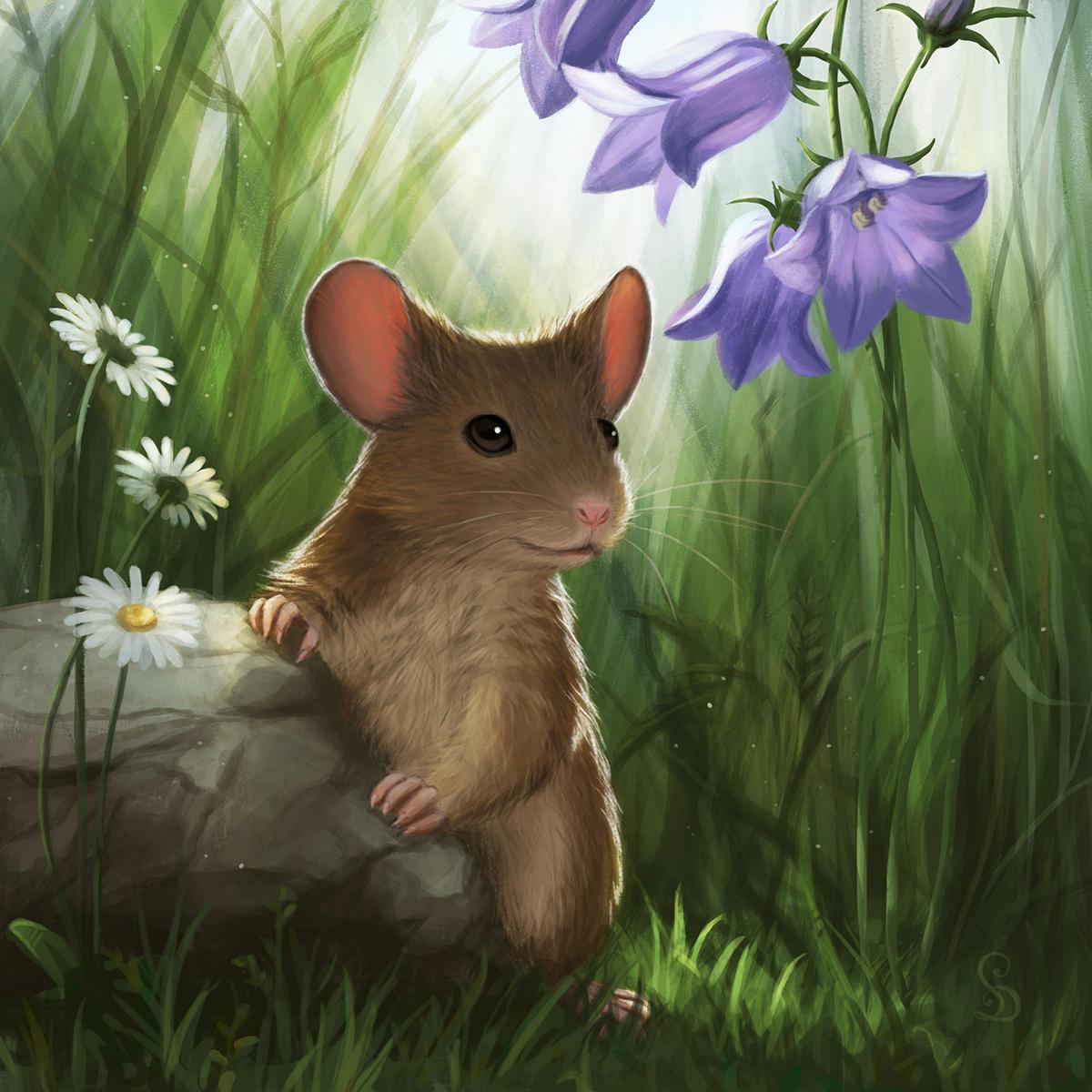 картинка красивого мышонка которые