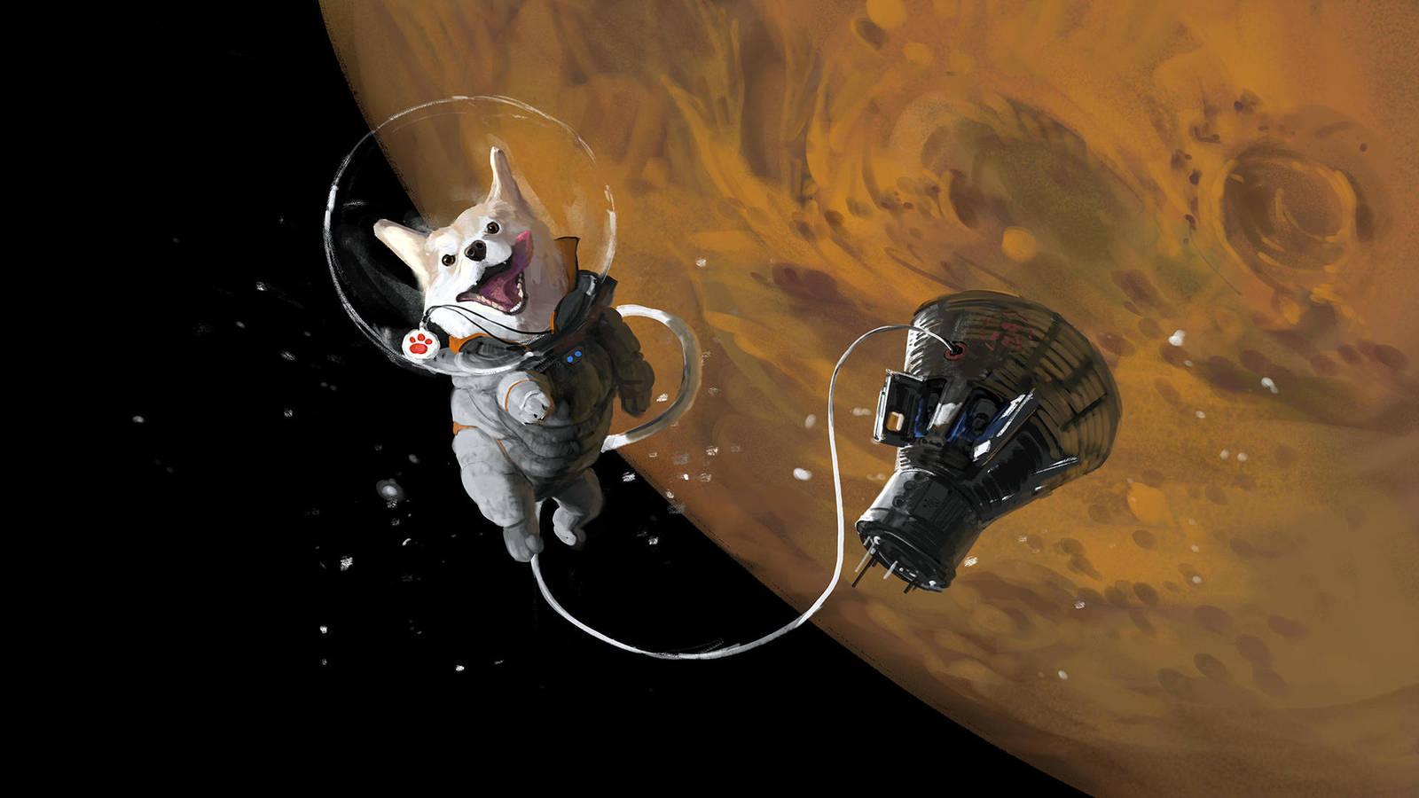 певица картинки животных в космосе была любовь