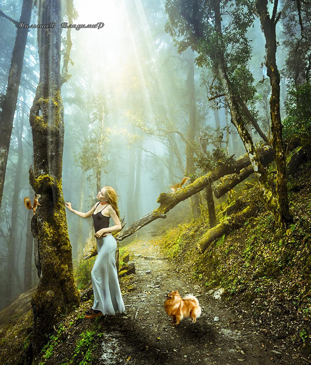 Фото Девушка с собакой, стоит у сухого дерева и любуется белкой, by Владимир Малышев