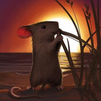 Фото Мышка лакомится осокой на берегу водоема, by StefanieDworschak