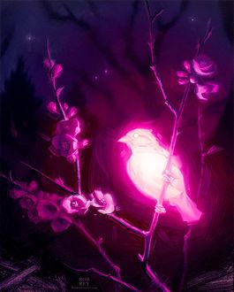 Фото Светящаяся птичка сидит на ветке цветущего дерева, by robrey