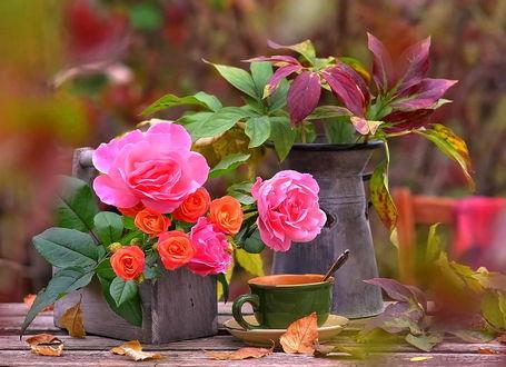 Фото Букет из листьев и букет из цветов на столе в вазах рядом с чашкой на блюдце