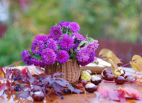 Фото Букет сиреневых цветов в плетеной корзинке на столе рядом с осенними листьями, желудями книгой и ягодами