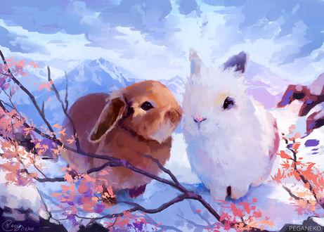 Фото Два милых кролика, by PegaNeko