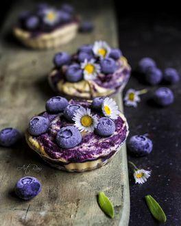 Фото Черничный десерт с ромашками, by artrawpaulina