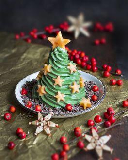 Фото Новогодний десерт в виде елки на тарелке, by artrawpaulina