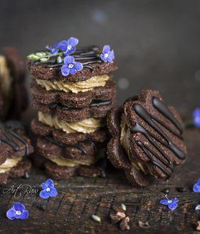 Фото Шоколадное печенье с голубыми цветочками, by artrawpaulina