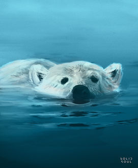 Фото Белый медведь на поверхности воды, by Eric Hallquist