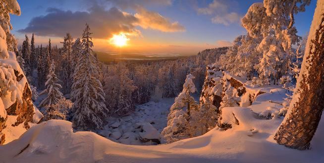 Фото Золотой закат над зимней природой. Фотограф Клековкин Алексей