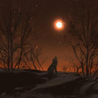 Фото Волк воет на луну, by snatti
