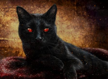 Фото Черный кот с красными глазами среди бликов, by Gwyneeth