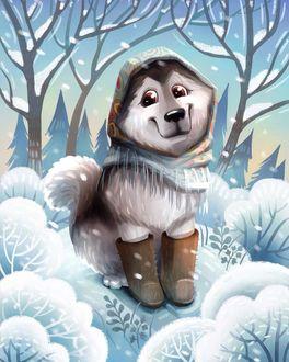 Фото Милый пес в валенках на снегу, иллюстратор Eugene Smolenceva