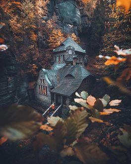 Фото Дом в осеннем лесу