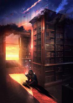 Фото Девушка сидит в библиотеке с книгой в руках, над которой парят эльфы и перед ней лежит кошка, by t1naart