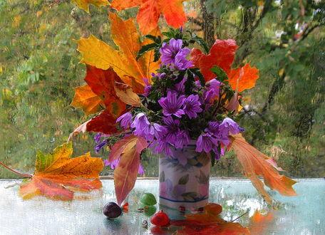 Фото Букет из осенних листьев и цветов в фарфоровой вазе на столе перед дождливым окном