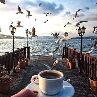 Фото В руке чашка с кофе на фоне набережной с парящими чайками