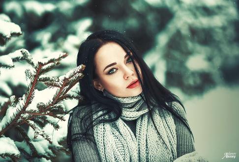 Фото Модель Ангелина Петрова стоит у заснеженного дерева, фотограф Denis Petrov