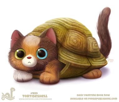 Фото Кот с разноцветными глазами в панцире (Tortiseshell), by Cryptid-Creations