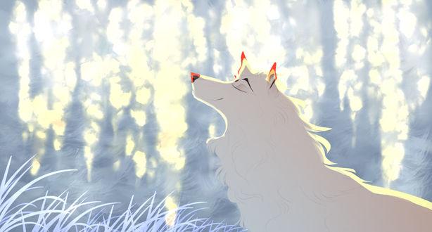 Фото Белый волк у воды, by yvsrael