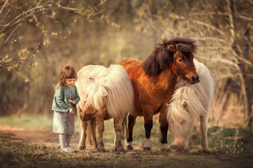 Фото Девочка стоит рядом с пони. Фотограф Анюта Онтикова