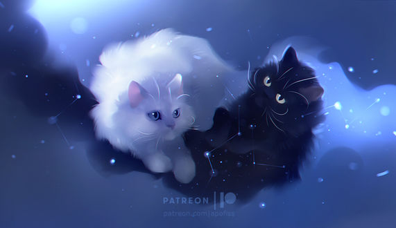 Фото Инь и ян, две кошечки в космосе, by Apofiss