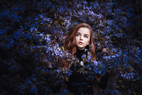 Фото Девочка Ann стоит в цветах, by Sergey Piltnik