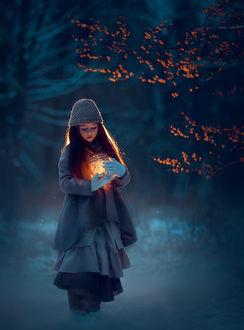 Фото Девочка с фонарем в волшебном лесу. Фотограф Катрин Белоцерковская