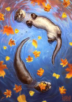 Фото Две выдры в воде, by Lhuin
