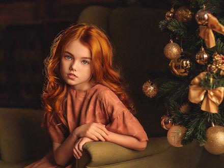 Фото Милая девочка сидит рядом с елкой. Фотограф Елена Михайлова
