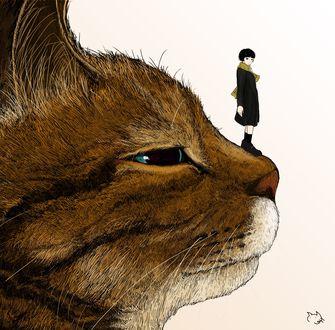 Фото Девочка стоит на мордочке кота