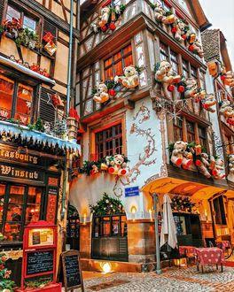 Фото Дома на улице Страсбурга украшены плюшевыми медведями и еловыми ветками, by Francesca and Tommaso