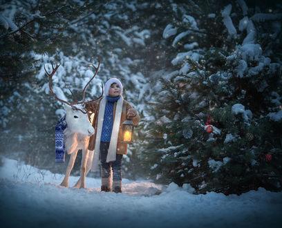 Фото Мальчик стоит рядом с оленем в зимнем лесу. Фотограф Диана Аникеева