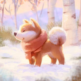 Фото Собака породы шиба-ину в шарфе стоит на снегу, by Lynn Chen